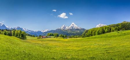 agricola: Vista panor�mica de un paisaje id�lico de verano en los Alpes Foto de archivo