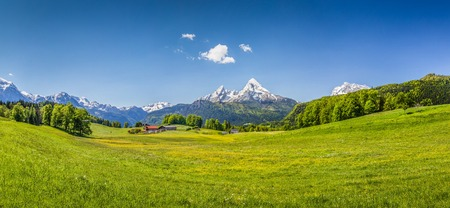 Panoramic view of idyllic summer landscape in the Alps