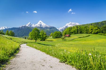 国立公園ベルヒテス, ババリア, ドイツ、アルプスの牧歌的な夏の風景
