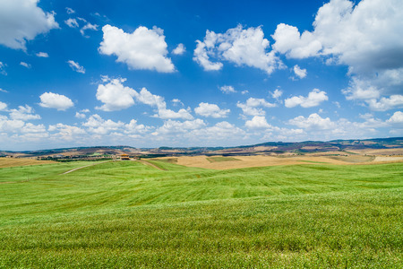 val d      orcia: Scenic Tuscany landscape with rolling hills and beautiful cloudscape in Val d Orcia, Tuscany, Italy