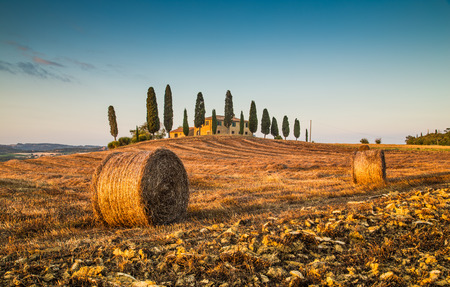 val d      orcia: Beautiful Tuscany landscape with traditional farm house and hay bales in golden evening light, Val d Orcia, Tuscany, Italy