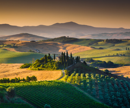 val d      orcia: Scenic Tuscany landscape with rolling hills and valleys in golden morning light, Val d Orcia, Tuscany, Italy Stock Photo