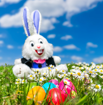 Beautiful view of colorful Easter eggs with funny Easter bunny in the background lying in the grass on a sunny day photo