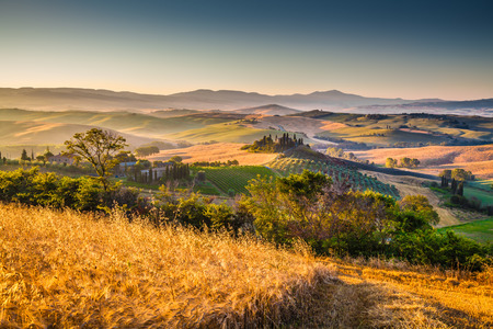 val d      orcia: Scenic Tuscany landscape with rolling hills and harvest fields in golden morning light, Val d Orcia, Italy Stock Photo