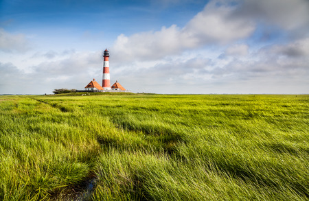 salt marsh: Beautiful landscape with famous Westerheversand lighthouse in the background at North Sea in Nordfriesland, Schleswig-Holstein, Germany Stock Photo