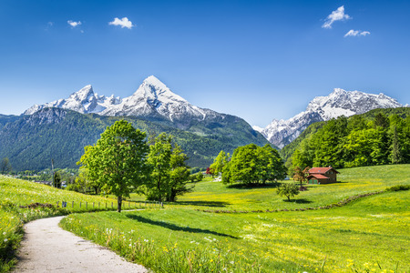 alp: Idyllic summer landscape in the Alps, Nationalpark Berchtesgadener Land, Bavaria, Germany Stock Photo