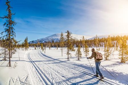 일몰 황금 저녁 빛에 스칸디나비아에서 남성 사람 크로스 컨트리 스키의 파노라마보기