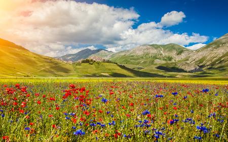 castelluccio: Beautiful summer landscape at Piano Grande mountain plateau in the Apennine Mountains, Castelluccio di Norcia, Umbria, Italy