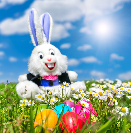 funny easter: Colorful Easter eggs with funny Easter bunny in the background lying in the grass on a sunny day