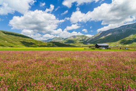 spring time: Beautiful summer landscape at Piano Grande (Great Plain) mountain plateau in the Apennine Mountains, Castelluccio di Norcia, Umbria, Italy