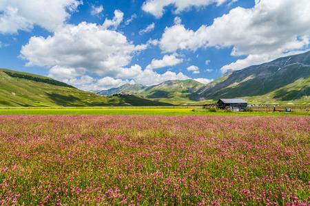 spring time: Beautiful summer landscape at Piano Grande (Great Plain) mountain plateau in the Apennine Mountains, Castelluccio di Norcia, Umbria, Italy