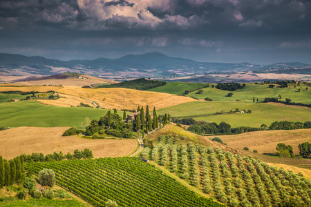 wine road: Scenic Tuscany landscape with rolling hills and valleys in golden evening light, Val d Orcia, Italy Stock Photo
