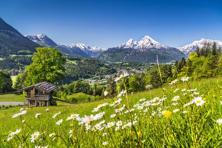 春には伝統的な山のシャレーで、アルプスの牧歌的な風景 写真素材