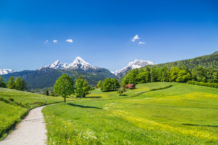 Idyllic summer landscape in the Alps, Nationalpark Berchtesgadener Land, Bavaria, Germany Stok Fotoğraf