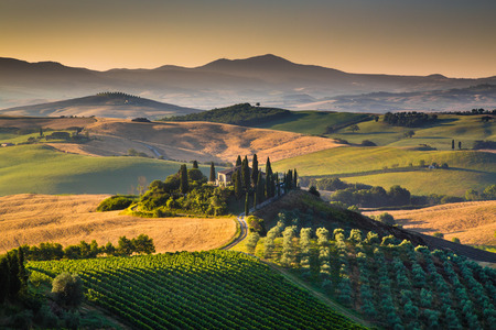 green house effect: Scenic Tuscany landscape with rolling hills and valleys in golden morning light, Val d Orcia, Italy