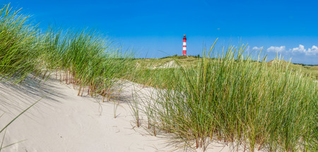Belle paysage de dunes avec le phare traditionnel sur l'île d'Amrum à Mer du Nord, Schleswig-Holstein, Allemagne Banque d'images - 43250811
