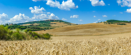 pienza: Beautiful Tuscany landscape with the old town of Pienza on a hill in summertime, Val dOrcia, Italy