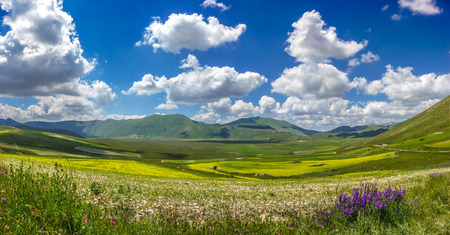 italy: Beautiful summer landscape at Piano Grande Great Plain mountain plateau in the Apennine Mountains, Castelluccio di Norcia, Umbria, Italy