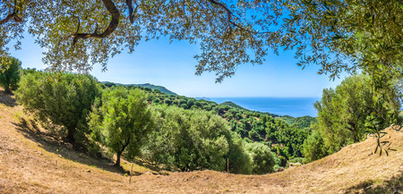 mediterranean coast: Panoramic view of beautiful coastal landscape at the Cilentan Coast on Capo Palinuro, province of Salerno, Campania, southern Italy