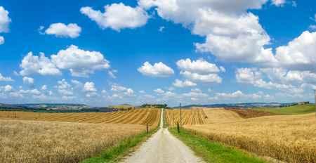 val d'orcia: Scenic Tuscany landscape with rolling hills and traditional farm house in Val dOrcia, Italy
