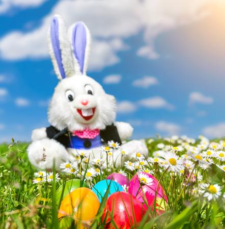 huevos de pascua: Hermosa vista de coloridos huevos de Pascua con el conejito de Pascua divertido en el fondo tirado en el c�sped en un d�a soleado