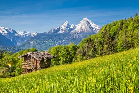 Panoramablick der idyllischen Berglandschaft in den Alpen mit frischen grünen Bergweiden, Blumen und alten traditionellen Berghütte im Frühjahr