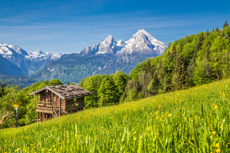 Panoramic view of idyllic mountain landscape in the Alps with fresh green mountain pastures, flowers and old traditional mountain lodge in springtime Standard-Bild