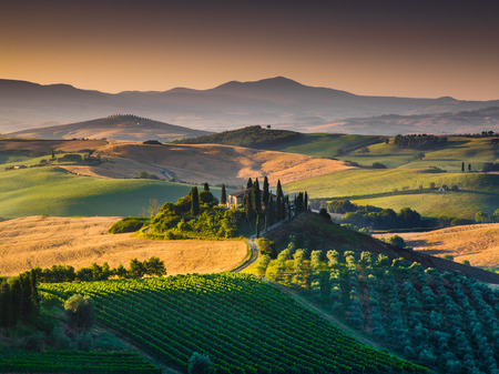 なだらかな丘と黄金の朝の光、イタリア、ヴァル ド オルチャ渓谷の風光明媚なトスカーナ風景