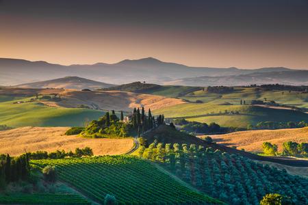 Malerische Landschaft der Toskana mit sanften Hügeln und Tälern in goldenen Morgenlicht, Val d'Orcia, Italien