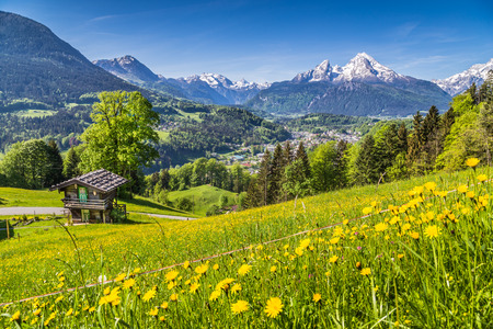 lodge: Panoramic view of idyllic mountain landscape in the Alps with fresh green mountain pastures with flowers and old traditional mountain lodge in springtime