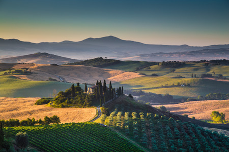 italy: Scenic Tuscany landscape with rolling hills and valleys in golden morning light, Val dOrcia, Italy