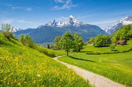 Idilliaco paesaggio estivo nelle Alpi con fresche verdi alpeggi e cime innevate sullo sfondo, Nazionale Berchtesgadener Land, Baviera, Germania Archivio Fotografico - 44052708