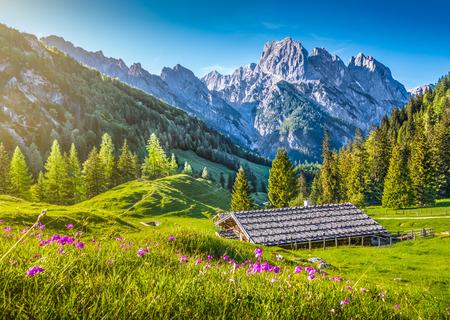 Idyllische Landschaft in den Alpen mit traditionellem Bergchalet und frischen grünen Almen mit blühenden Blumen bei Sonnenuntergang, Nationalpark Berchtesgadener Land, Bayern, Deutschland