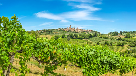 historic site: Panoramic view of the medieval town of San Gimignano on a hill, Tuscany, Italy