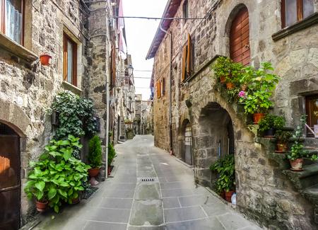 伝統的な古い家や、歴史的な町の Vitorchiano、ヴィテルボの州、ラツィオ州でのどかな路地の美しい景色