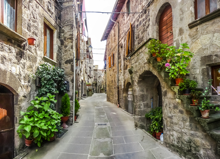 italian: Beautiful view of old traditional houses and idyllic alleyway in the historic town of Vitorchiano, province of Viterbo, Lazio, Italy