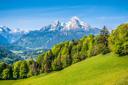 green meadow: Idyllic landscape in the Alps with fresh green meadows, blooming flowers, farmhouses and snowcapped mountain tops in the background, Nationalpark Berchtesgadener Land, Bavaria, Germany