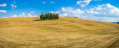 val d'orcia: Scenic Tuscany landscape with golden harvest fields and the famous group of cypress trees on top of a hill on a sunny day, Val dOrcia, Italy Stock Photo