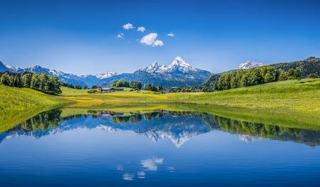 風景: 牧歌的な夏の風景とアルプスのパノラマの景色は山の湖をオフにし、バック グラウンドで新鮮な緑山の牧草地