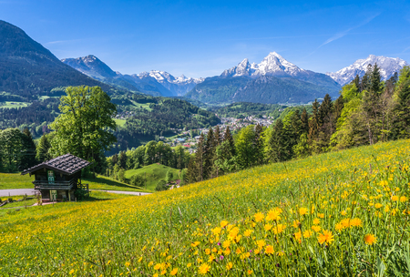 spring season: Panoramic view of idyllic landscape in the Alps with a traditional mountain lodge in between fresh green blooming fields and fruit trees in springtime Stock Photo