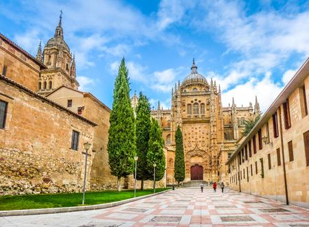 castilla y leon: Beautiful view of Cathedral of Salamanca, Castilla y Leon region, Spain