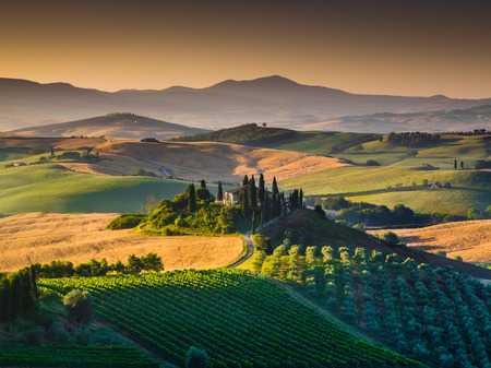 val d'orcia: Scenic Tuscany landscape with rolling hills and valleys in golden morning light, Val dOrcia, Italy