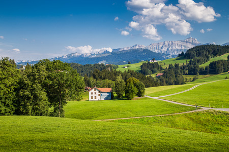 landscape flowers: Idyllic landscape in the Alps with green meadows and famous Saentis mountain top in the background, Appenzellerland, Switzerland Stock Photo
