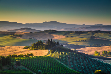 san quirico d'orcia: Scenic Tuscany landscape with rolling hills and valleys in golden morning light, Val dOrcia, Italy
