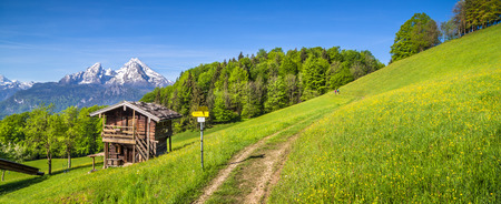 flowers summer: Panoramic view of idyllic mountain landscape in the Alps with hiking trail on fresh green mountain pastures, flowers and old traditional mountain lodge in springtime