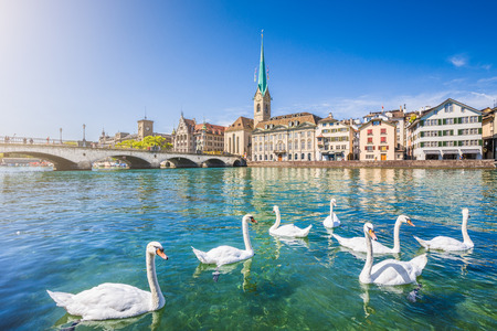 Beautiful view of the historic city center of Zurich with famous Fraumunster Church and swans on river Limmat Stock Photo