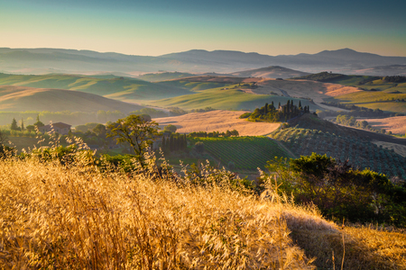 val d'orcia: Scenic Tuscany landscape with rolling hills and harvest fields in golden morning light, Val dOrcia, Italy