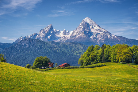 Idyllic landscape in the Alps with fresh green meadows, blooming flowers, typical farmhouses and snowcapped mountain tops in the background, Nationalpark Berchtesgadener Land, Bavaria, Germany Stock Photo - 61492053