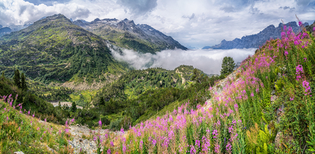 climatic: Beautiful panoramic view of gorgeous mountain scenery in the Alps with snow-capped mountain tops, ice glaciers, lakes and green pastures with blooming flowers on a sunny day with blue sky in summer