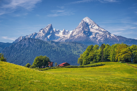 farmhouses: Idyllic landscape in the Alps with fresh green meadows, blooming flowers, typical farmhouses and snowcapped mountain tops in the background, Nationalpark Berchtesgadener Land, Bavaria, Germany Stock Photo